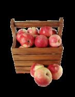 Fruit verwerken