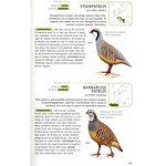 'Veldgids vogels van Europa' - Paul Sterry