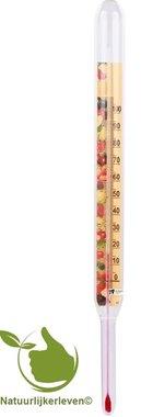 Vloeistof thermometer 23 cm