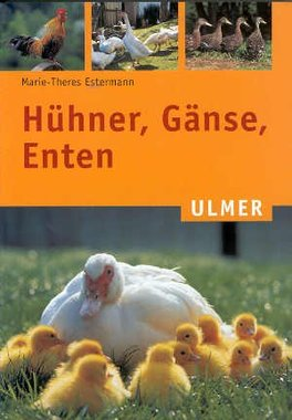 'Huhner, Ganse, Enten' - Marie-Theres Estermann