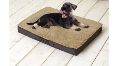 Orthopedisch Hondenkussen 72x50x8cm Bruin/Beige