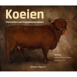 'Koeien'- Val Porter