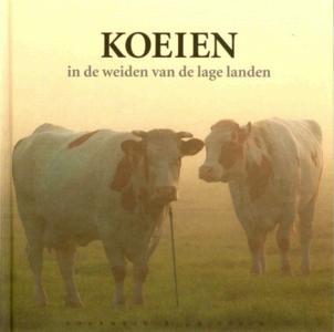 Koeien van Reimer Strikwerda